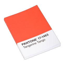PANTONE TANGERINE TANGO JOURNAL