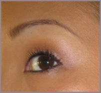 BOBBI BROWN WILD ROSE SHIMMER BRICK EYE LOOK