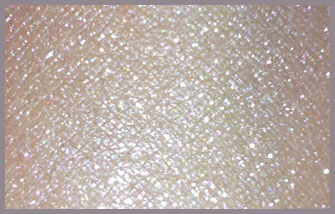 CAVIAR AND OYSTER PALETTE SWATCH (BALLET SPARKLE)