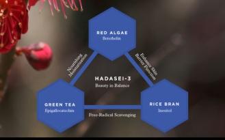 HADASEI-3